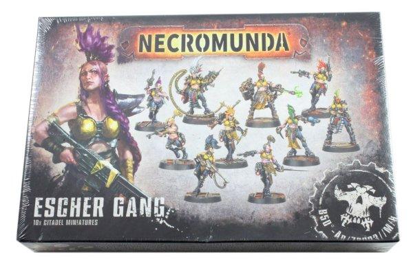 Escher Gang